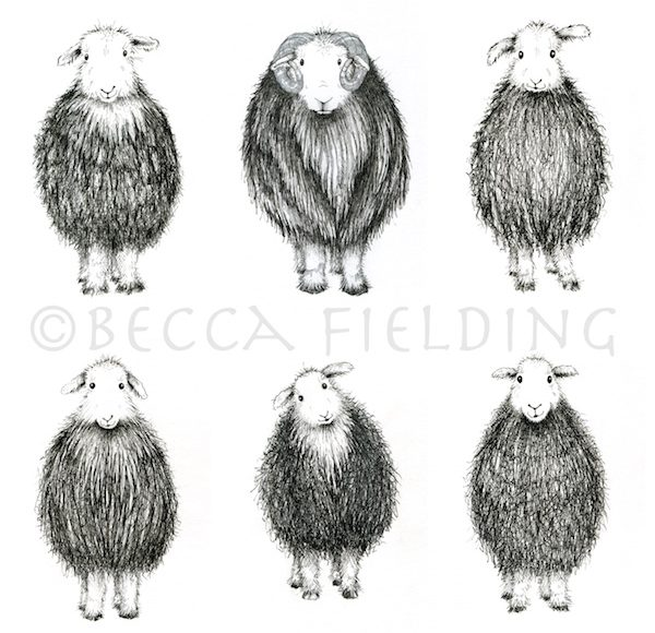 SHEEP COLLAGE copy 2